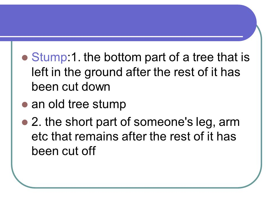 Stump:1. the bottom part of a tree that is left in the ground after the rest of it has been cut down an old tree stump 2. the short part of someone's