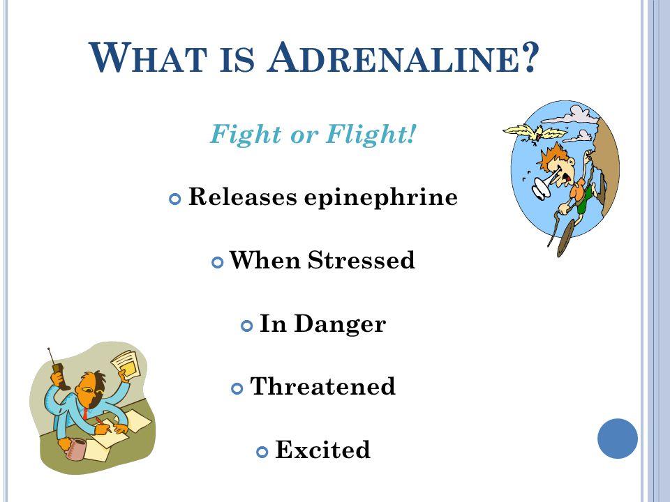 W HAT IS A DRENALINE . Fight or Flight.