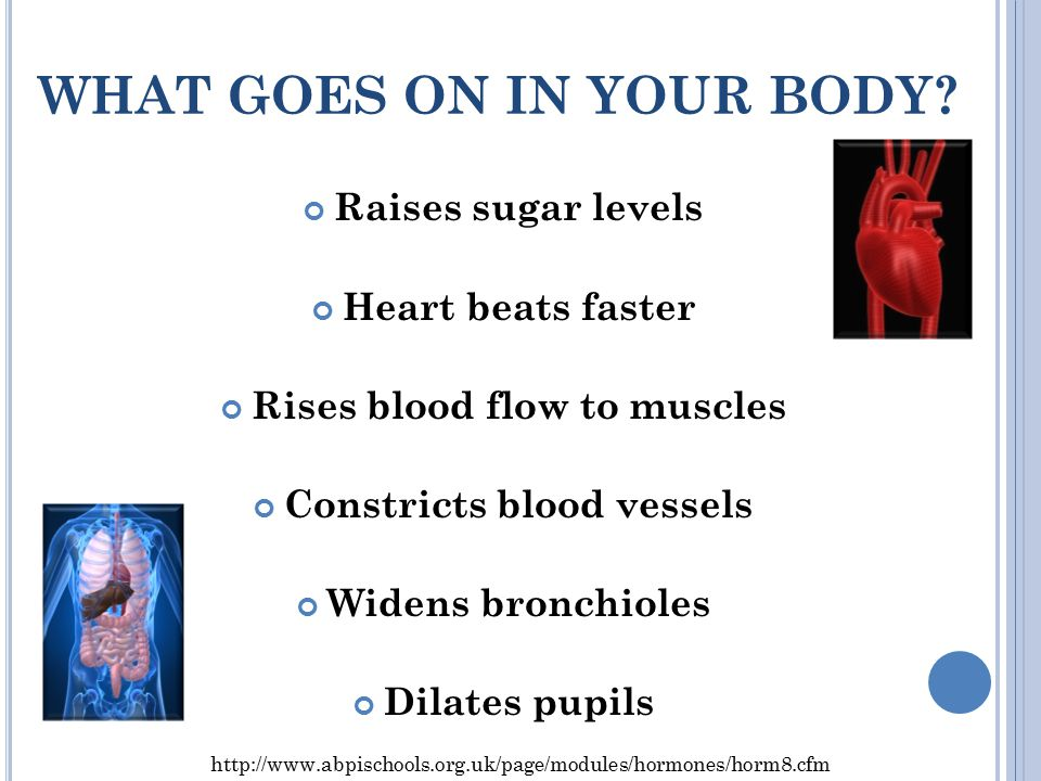 WHAT GOES ON IN YOUR BODY.