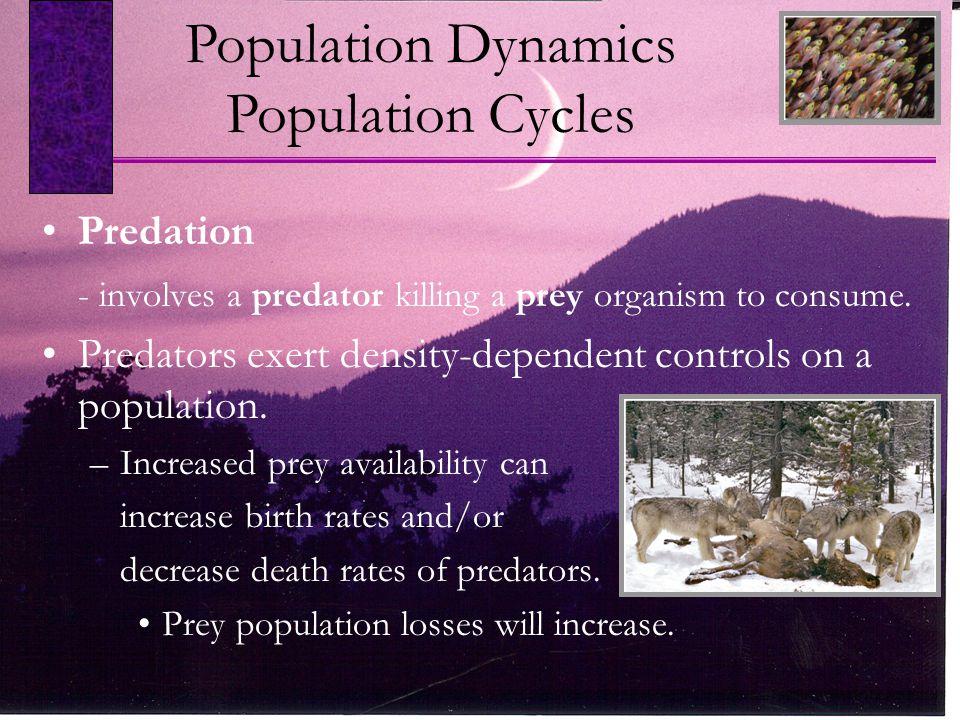Predation - involves a predator killing a prey organism to consume. Predators exert density-dependent controls on a population. –Increased prey availa