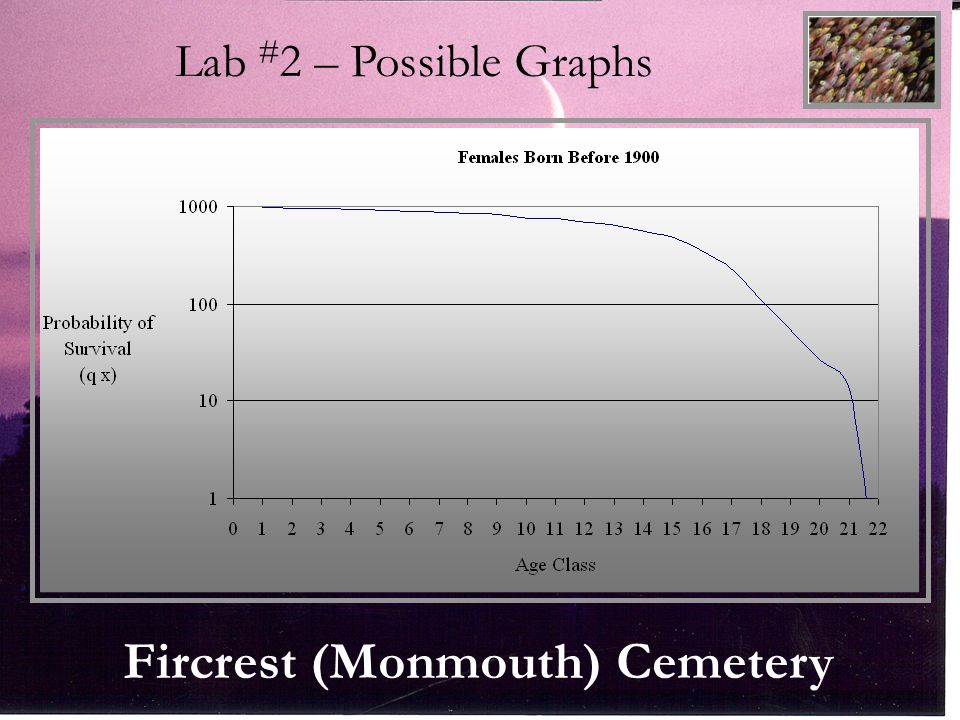 Fircrest (Monmouth) Cemetery Lab # 2 – Possible Graphs