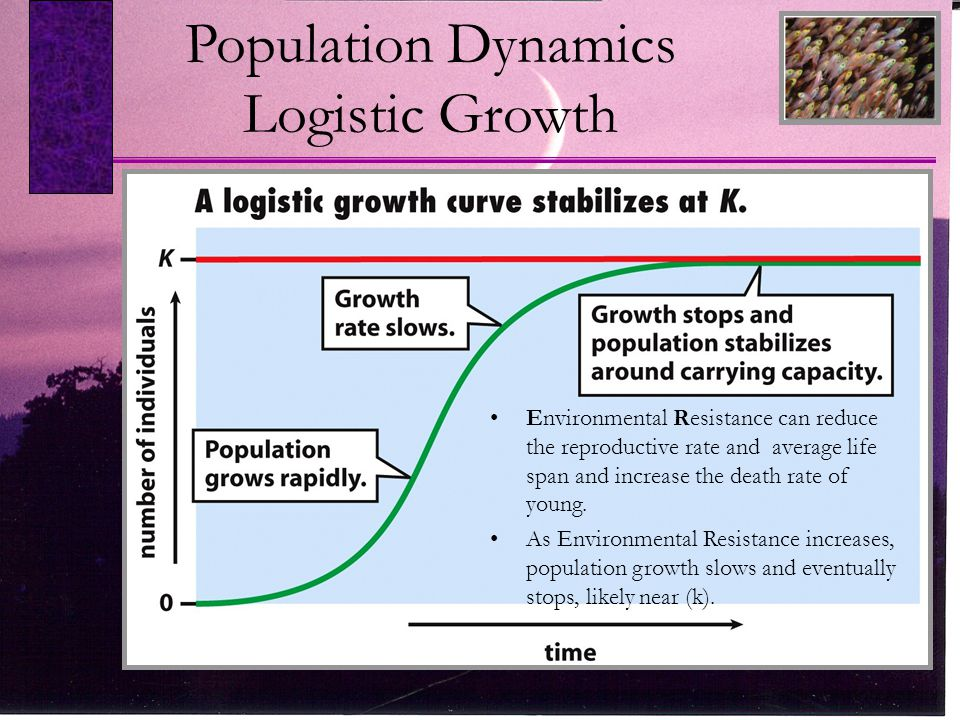 Carrying Capacity Finite Resources.