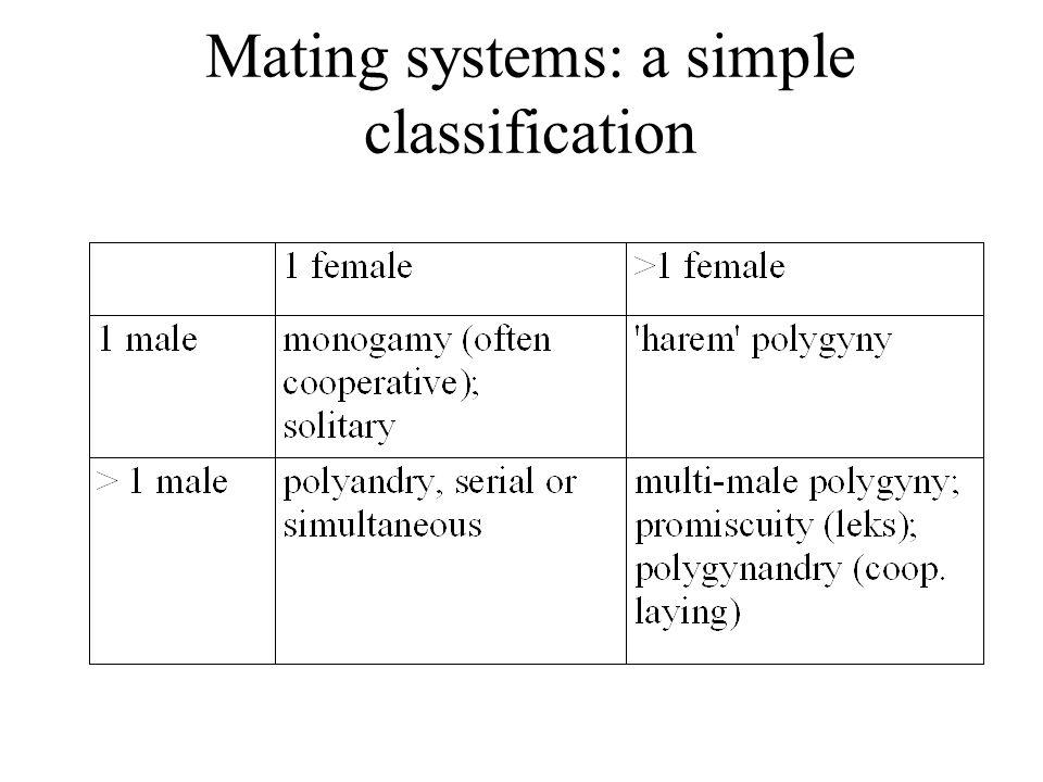 Monogamy in Mammals Monogamy is rare in mammals Why.