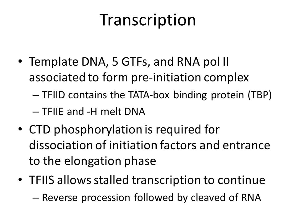 Transcription Template DNA, 5 GTFs, and RNA pol II associated to form pre-initiation complex – TFIID contains the TATA-box binding protein (TBP) – TFI