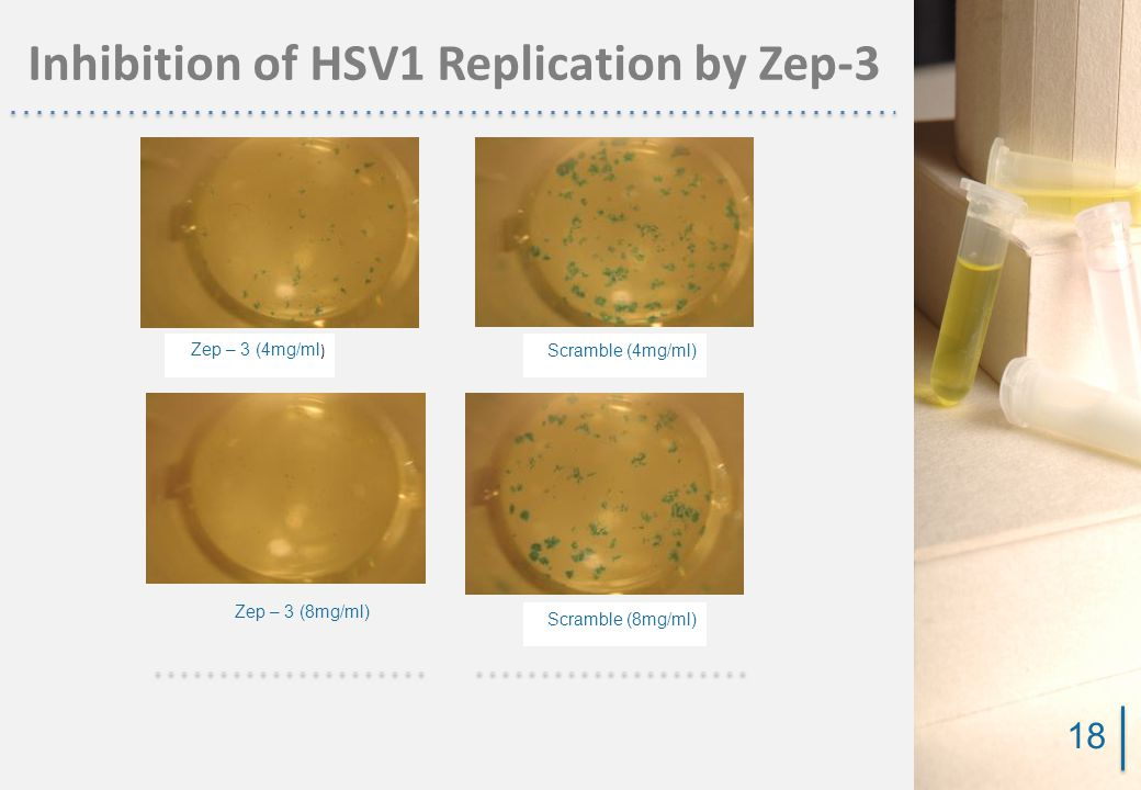Inhibition of HSV1 Replication by Zep-3 Zep – 3 (4mg/ml ) Zep – 3 (8mg/ml) Scramble (4mg/ml) Scramble (8mg/ml) 18