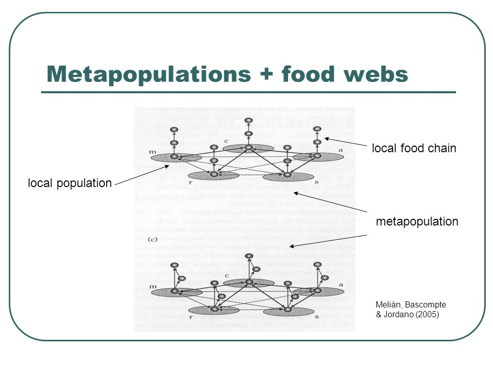 Metapopulations + food webs Melián, Bascompte & Jordano (2005) local population local food chain metapopulation