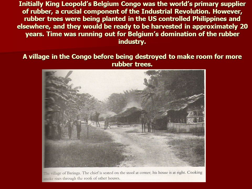 Initially King Leopold's Belgium Congo was the world's primary supplier of rubber, a crucial component of the Industrial Revolution.