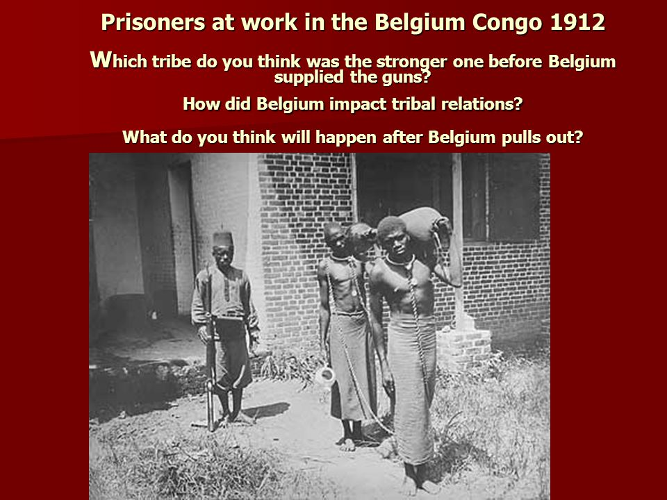 Prisoners at work in the Belgium Congo 1912 W hich tribe do you think was the stronger one before Belgium supplied the guns.