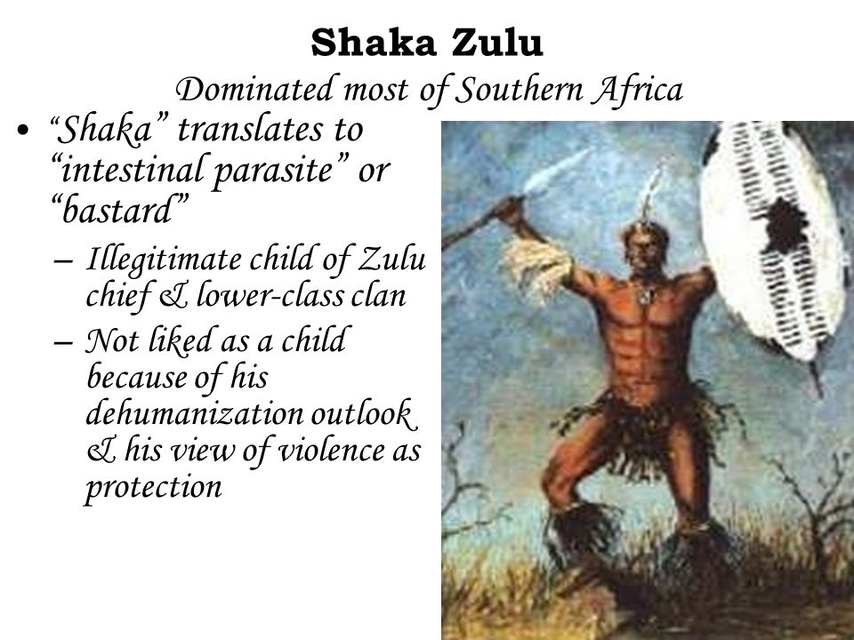 "Shaka Zulu Dominated most of Southern Africa "" Shaka"" translates to ""intestinal parasite"" or ""bastard"" –Illegitimate child of Zulu chief & lower-class"