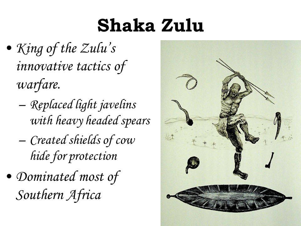 Shaka Zulu King of the Zulu's innovative tactics of warfare. –Replaced light javelins with heavy headed spears –Created shields of cow hide for protec