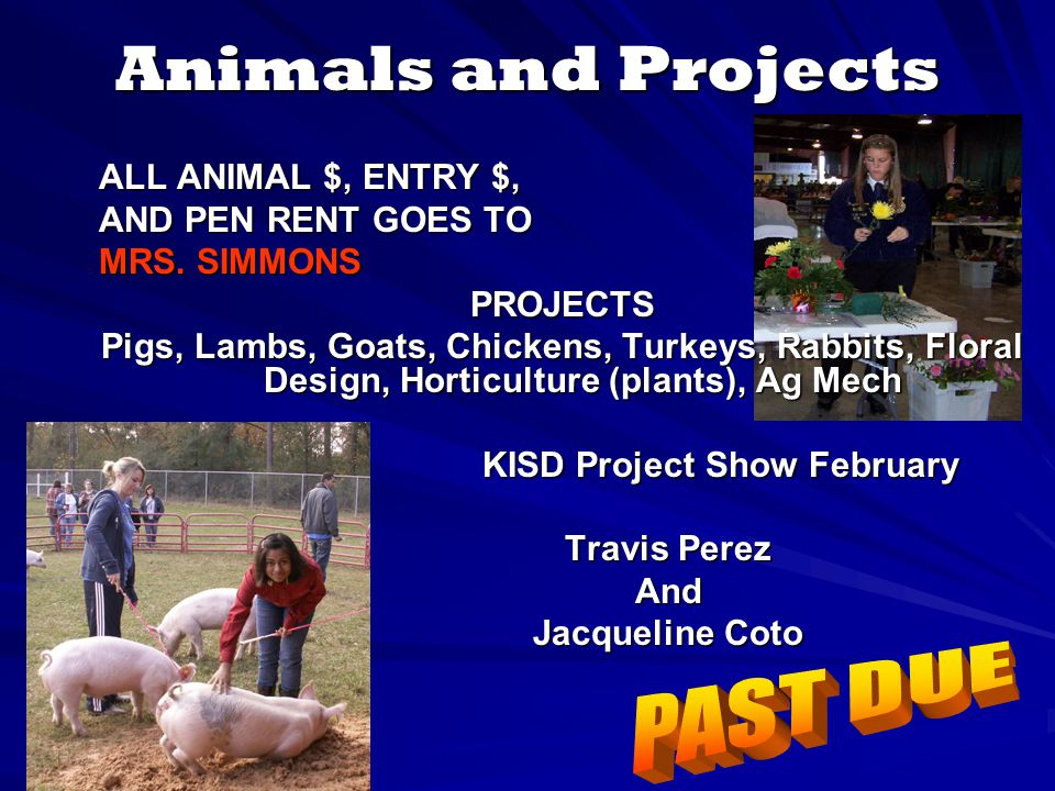 Animals and Projects ALL ANIMAL $, ENTRY $, AND PEN RENT GOES TO MRS.