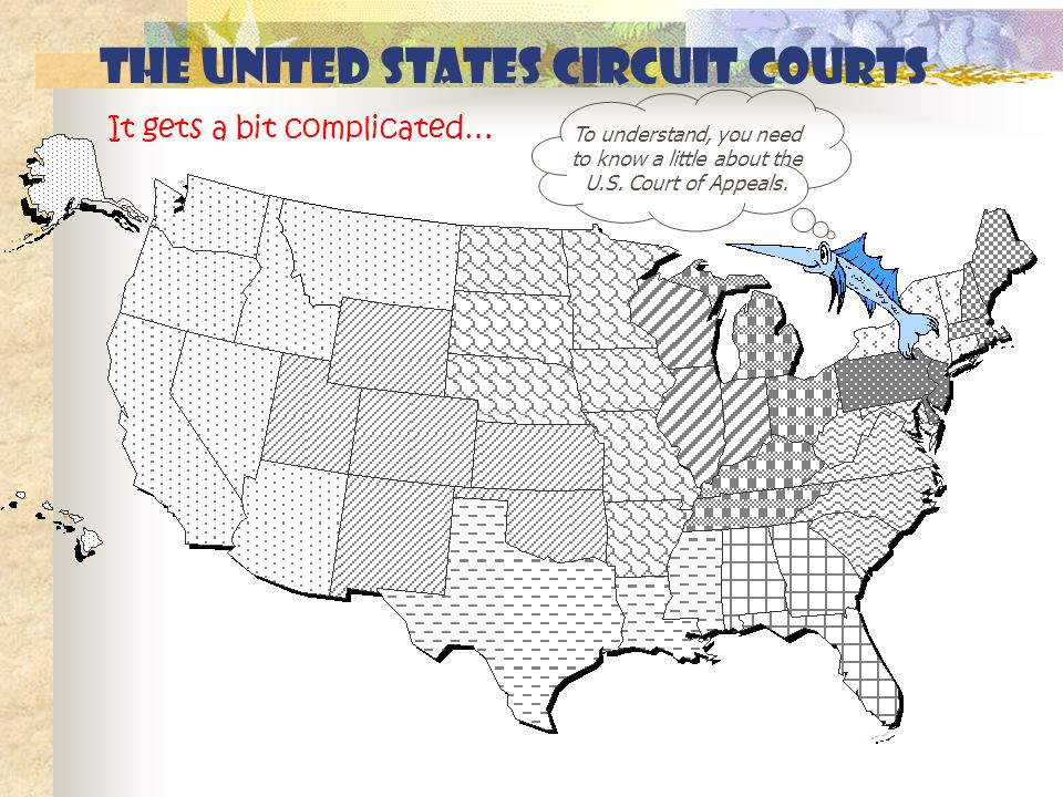 The United States circuit courts To understand, you need to know a little about the U.S.