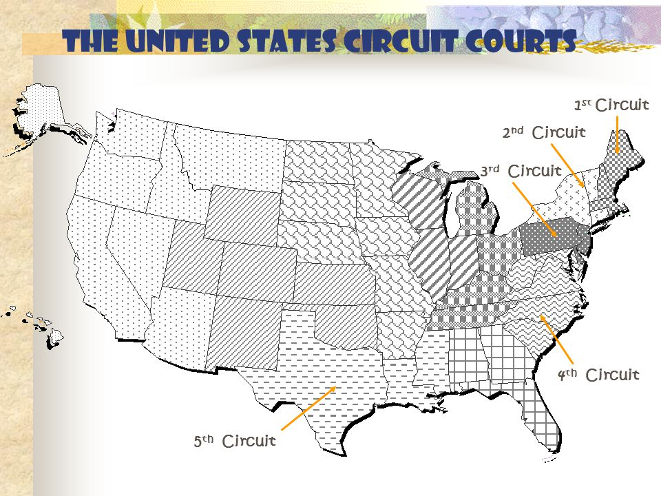 The United States circuit courts 1 st Circuit 2 nd Circuit 3 rd Circuit 4 th Circuit 5 th Circuit