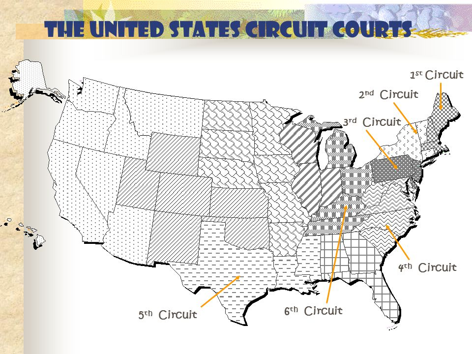 The United States circuit courts 1 st Circuit 2 nd Circuit 3 rd Circuit 4 th Circuit 5 th Circuit 6 th Circuit