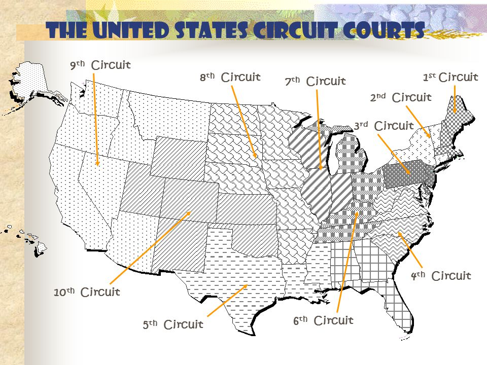 The United States circuit courts 1 st Circuit 2 nd Circuit 3 rd Circuit 4 th Circuit 5 th Circuit 6 th Circuit 7 th Circuit 8 th Circuit 9 th Circuit