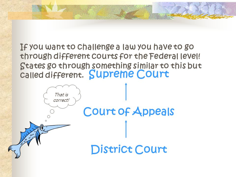If you want to challenge a law you have to go through different courts for the Federal level.