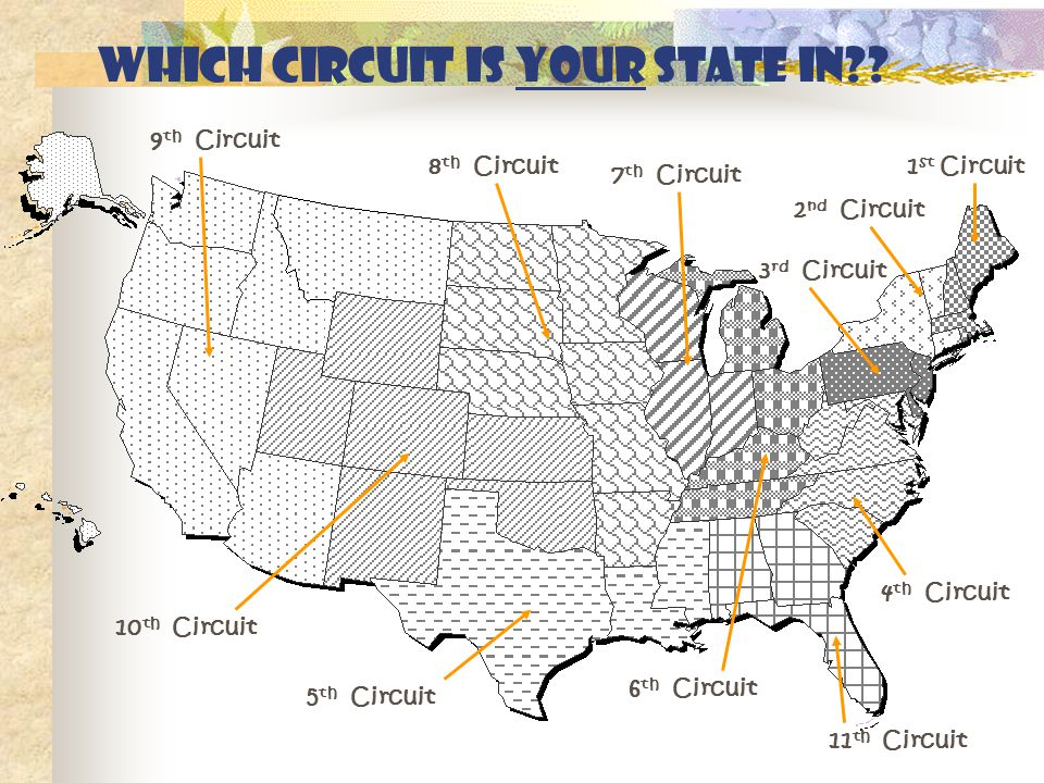 Which Circuit is your state in .