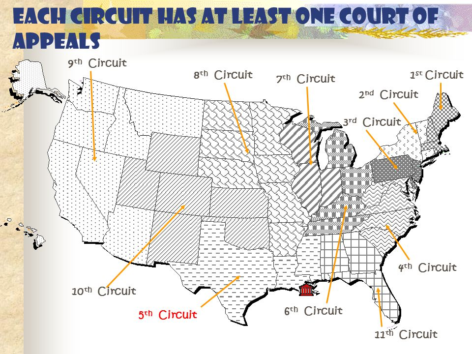Each circuit has at least one Court of Appeals 1 st Circuit 2 nd Circuit 3 rd Circuit 4 th Circuit 5 th Circuit 6 th Circuit 7 th Circuit 8 th Circuit 9 th Circuit 10 th Circuit 11 th Circuit