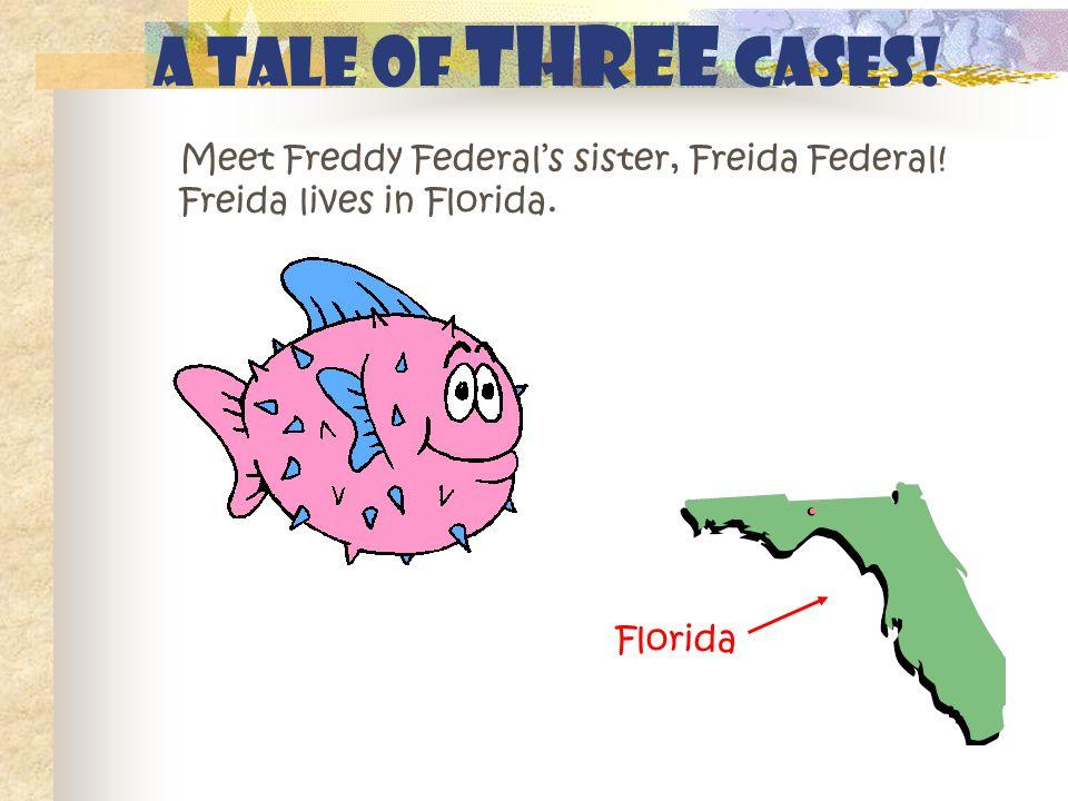 Meet Freddy Federal's sister, Freida Federal. Freida lives in Florida.