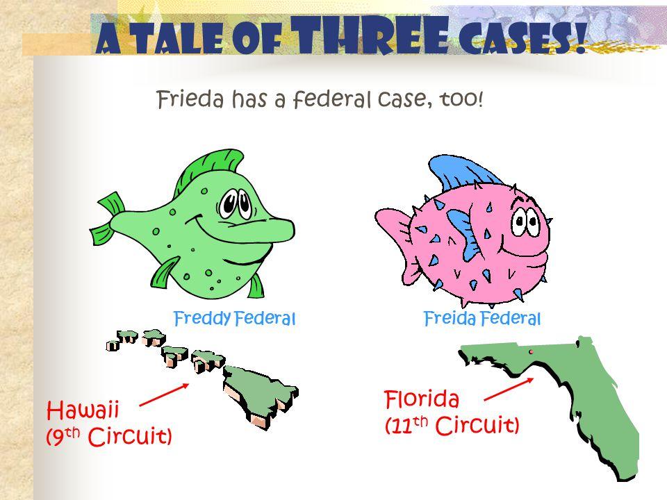 Frieda has a federal case, too! A tale of THREE cases! Florida (11 th Circuit) Hawaii (9 th Circuit) Freddy FederalFreida Federal