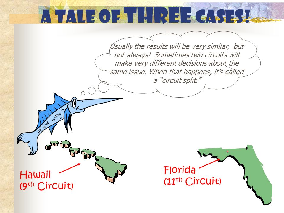A tale of THREE cases! Florida (11 th Circuit) Hawaii (9 th Circuit) Usually the results will be very similar, but not always! Sometimes two circuits