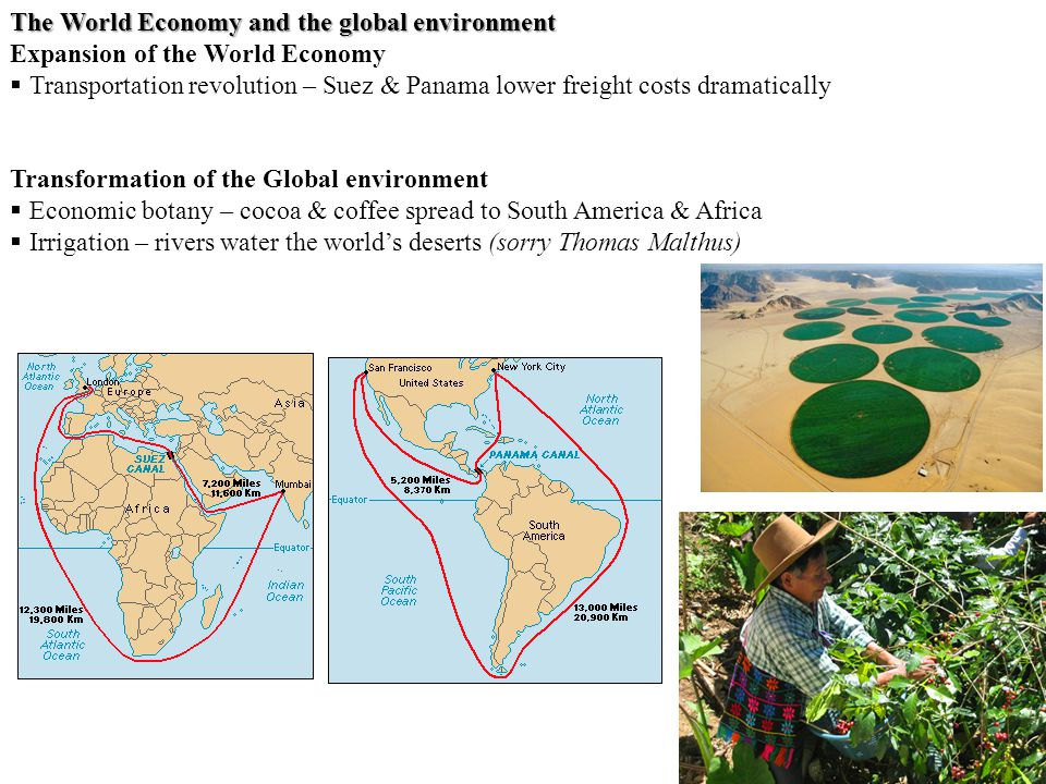 The World Economy and the global environment Expansion of the World Economy  Transportation revolution – Suez & Panama lower freight costs dramatically Transformation of the Global environment  Economic botany – cocoa & coffee spread to South America & Africa  Irrigation – rivers water the world's deserts (sorry Thomas Malthus)