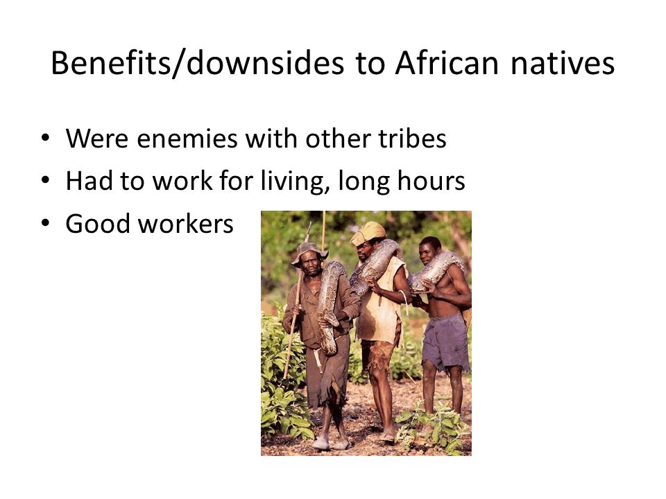 Benefits/downsides to African natives Were enemies with other tribes Had to work for living, long hours Good workers