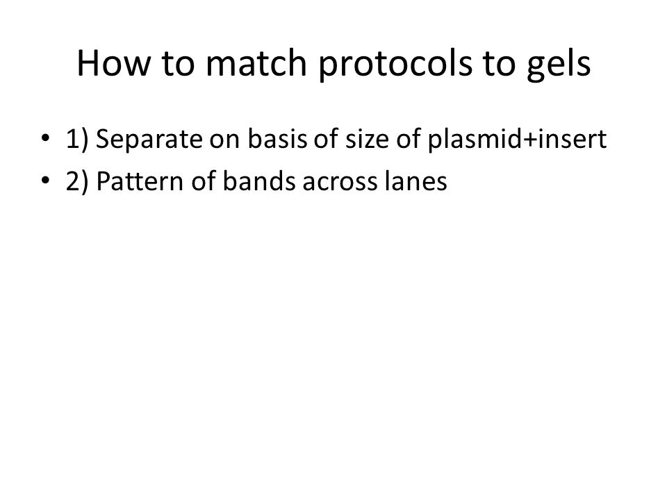 How to match protocols to gels 1) Separate on basis of size of plasmid+insert 2) Pattern of bands across lanes