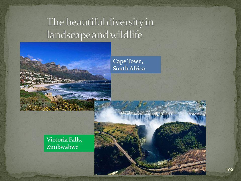 Victoria Falls, Zimbwabwe 102 Cape Town, South Africa