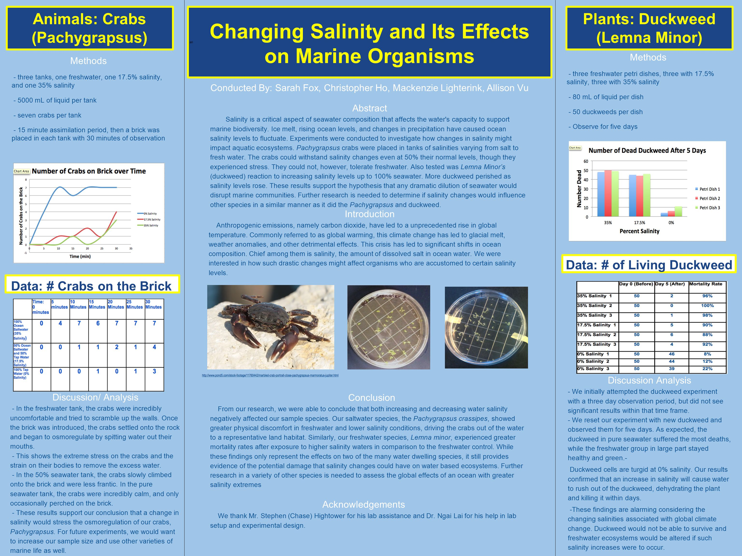 ari Changing Salinity and Its Effects on Marine Organisms Animals: Crabs (Pachygrapsus) Plants: Duckweed (Lemna Minor) Data: # Crabs on the Brick Data: # of Living Duckweed Methods - three tanks, one freshwater, one 17.5% salinity, and one 35% salinity - 5000 mL of liquid per tank - seven crabs per tank - 15 minute assimilation period, then a brick was placed in each tank with 30 minutes of observation Discussion/ Analysis - In the freshwater tank, the crabs were incredibly uncomfortable and tried to scramble up the walls.