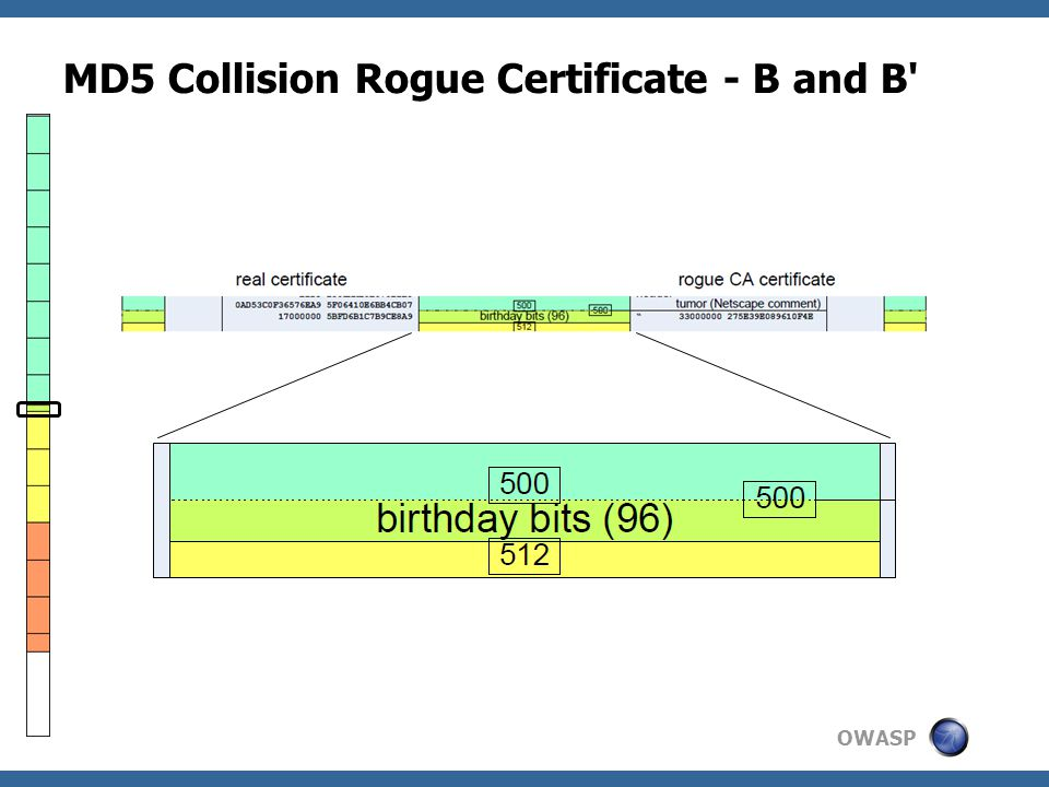OWASP MD5 Collision Rogue Certificate - B and B