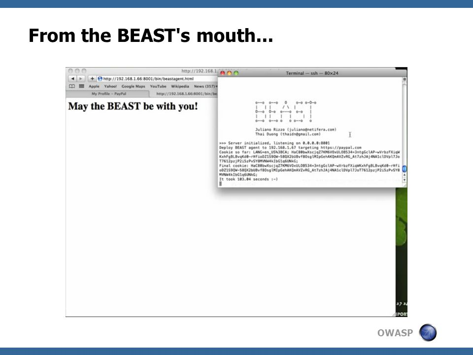 OWASP From the BEAST s mouth...