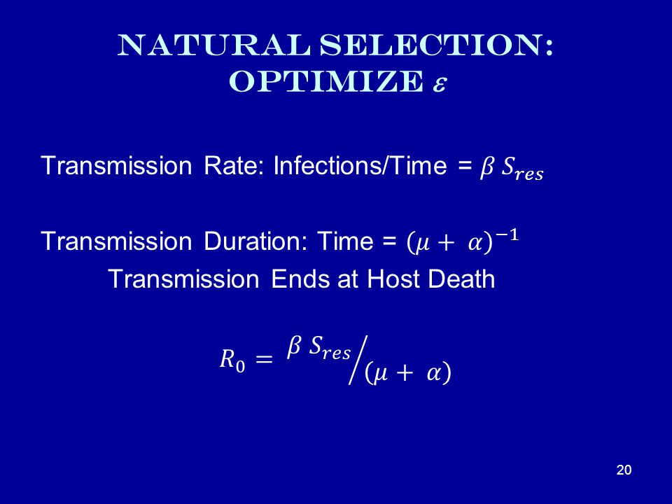 Natural Selection: Optimize  20