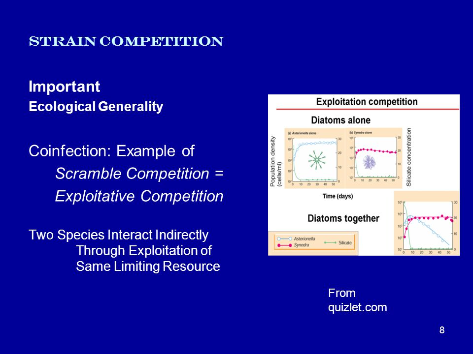 Strain Competition Important Ecological Generality Coinfection: Example of Scramble Competition = Exploitative Competition Two Species Interact Indirectly Through Exploitation of Same Limiting Resource 8 From quizlet.com