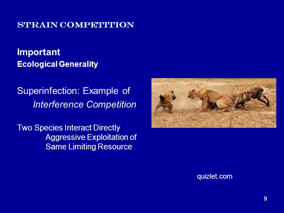 Strain Competition Important Ecological Generality Superinfection: Example of Interference Competition Two Species Interact Directly Aggressive Exploitation of Same Limiting Resource 9 quizlet.com