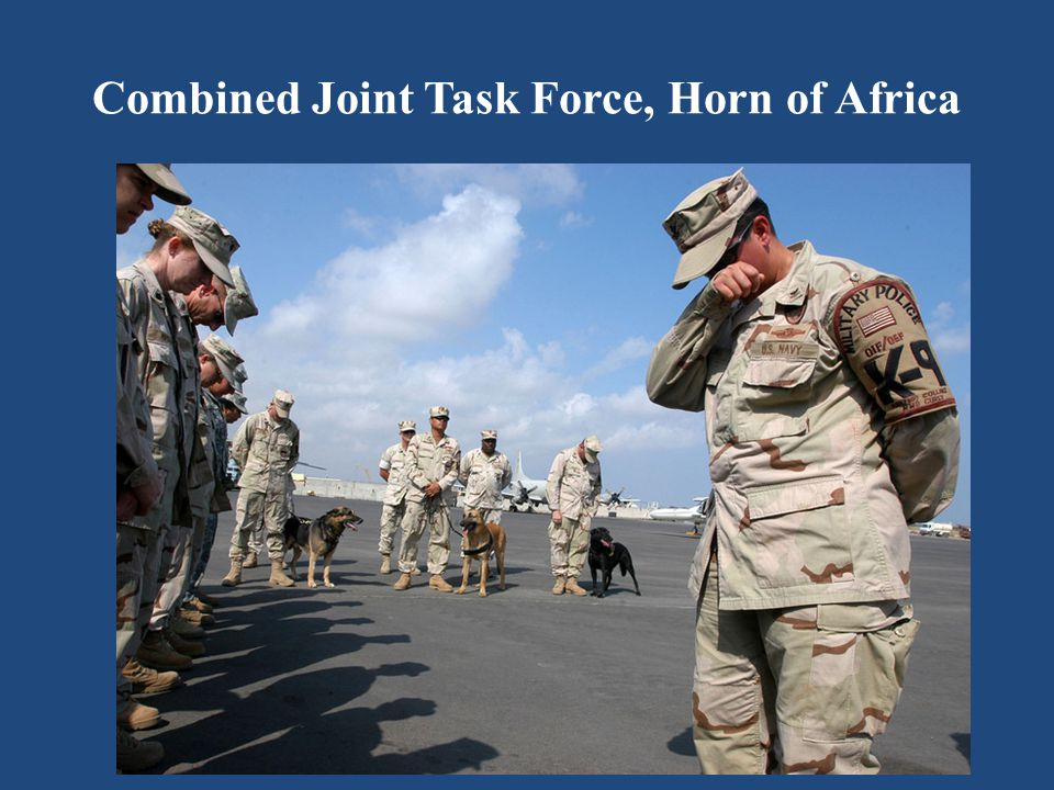 Combined Joint Task Force, Horn of Africa