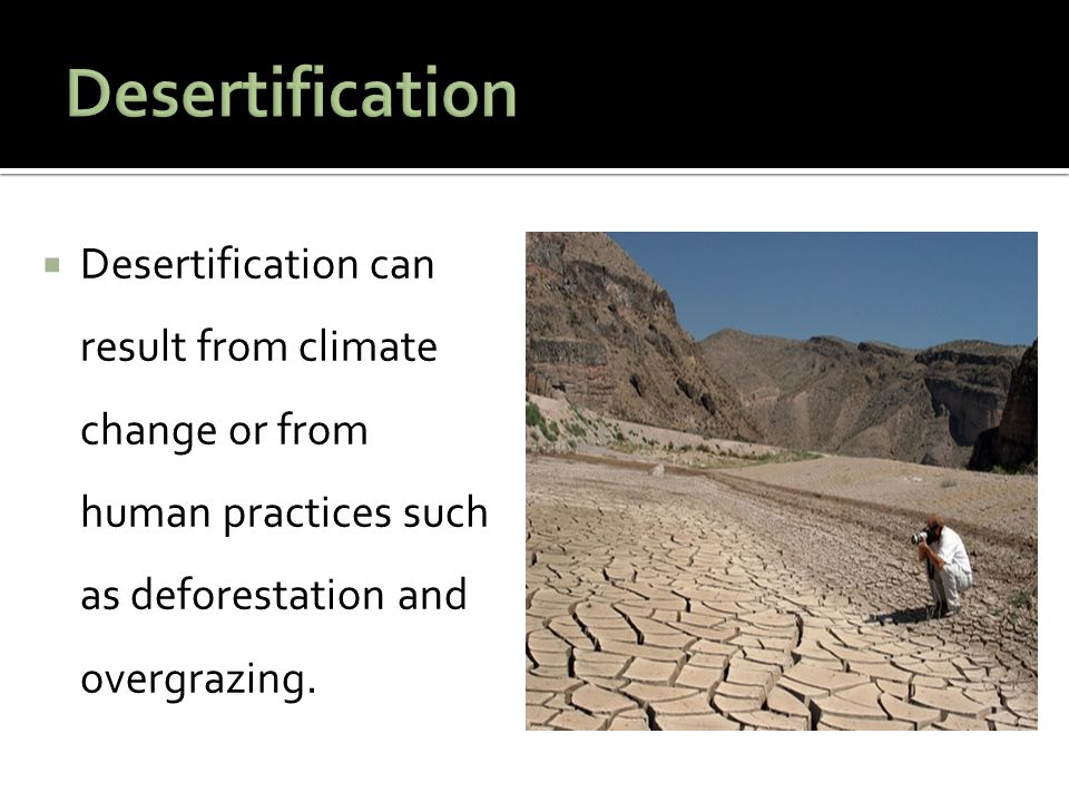  Desertification can result from climate change or from human practices such as deforestation and overgrazing.