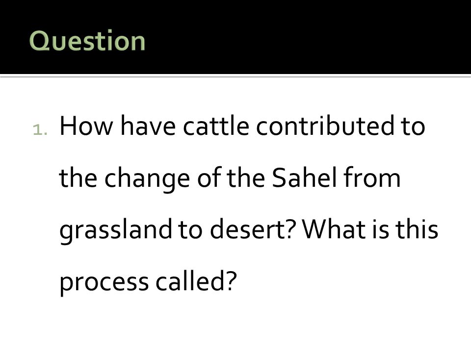 1. How have cattle contributed to the change of the Sahel from grassland to desert? What is this process called?