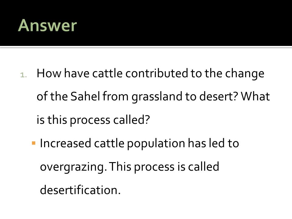 Increased cattle population has led to overgrazing. This process is called desertification.