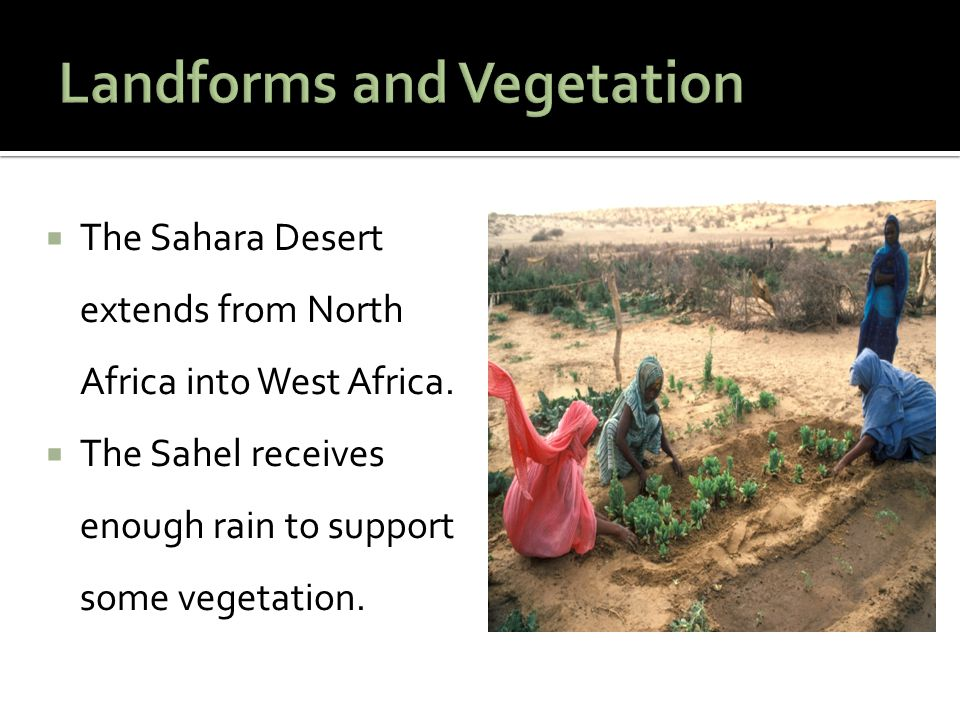  The Sahara Desert extends from North Africa into West Africa.  The Sahel receives enough rain to support some vegetation.