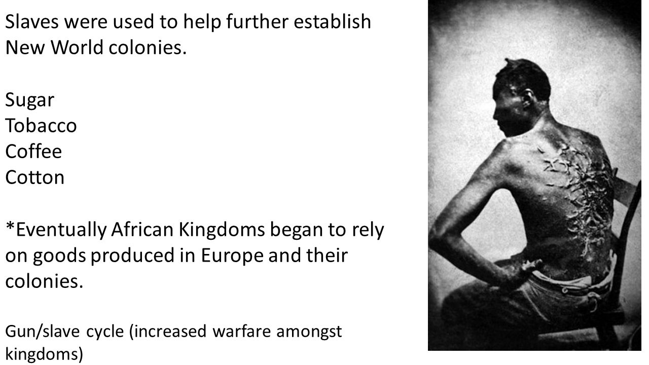 Slaves were used to help further establish New World colonies.