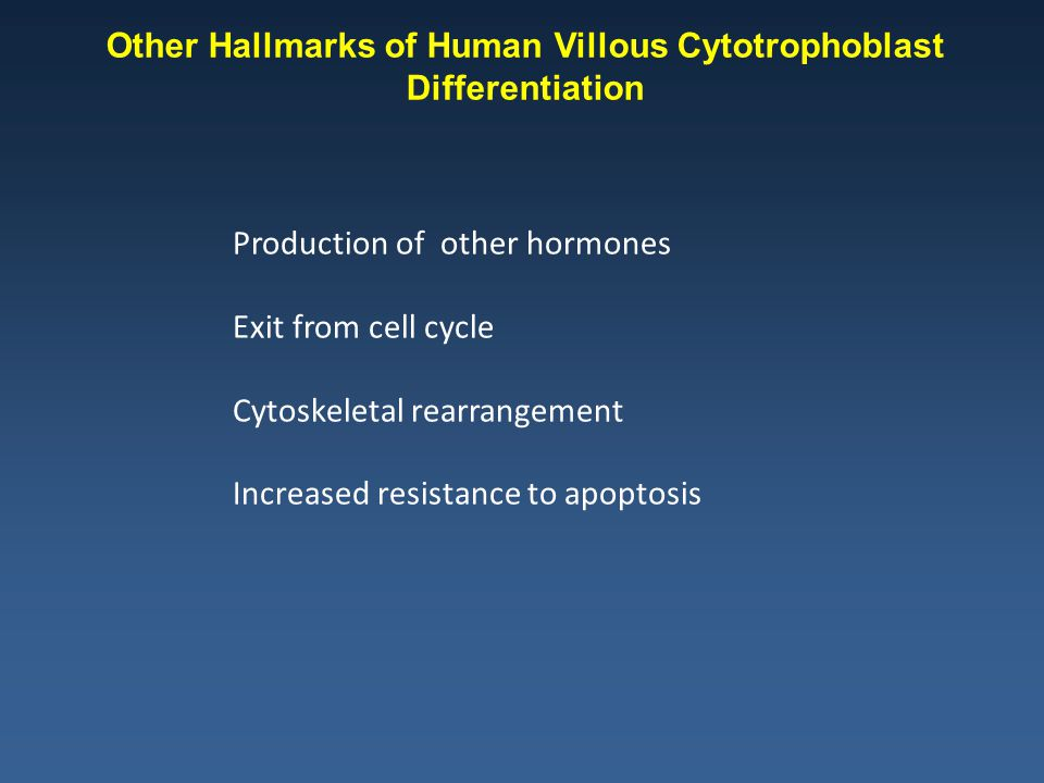 Other Hallmarks of Human Villous Cytotrophoblast Differentiation Production of other hormones Exit from cell cycle Cytoskeletal rearrangement Increased resistance to apoptosis