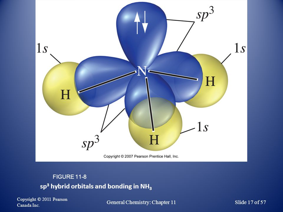 sp 3 hybrid orbitals and bonding in NH 3 FIGURE 11-8 Copyright © 2011 Pearson Canada Inc.