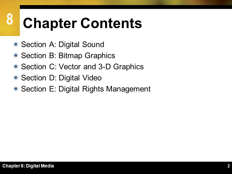 8 SECTION C Chapter 8: Digital Media33 Vector and 3-D Graphics  Vector Graphics Basics  Vector-to-Bitmap Conversion  Vector Graphics on the Web  3-D Graphics