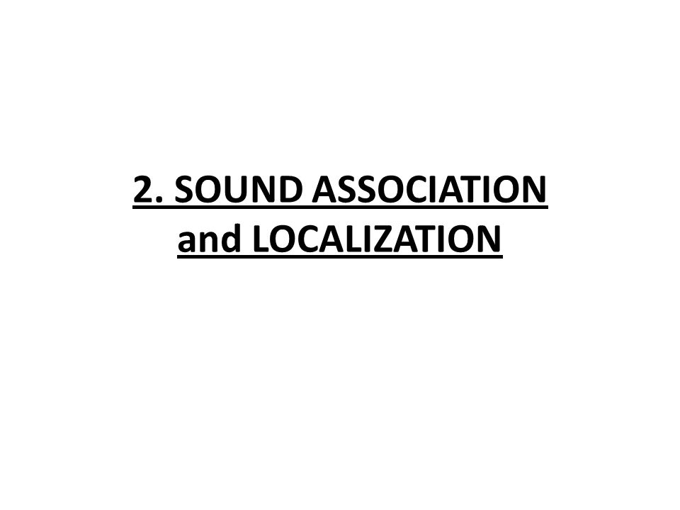 2. SOUND ASSOCIATION and LOCALIZATION