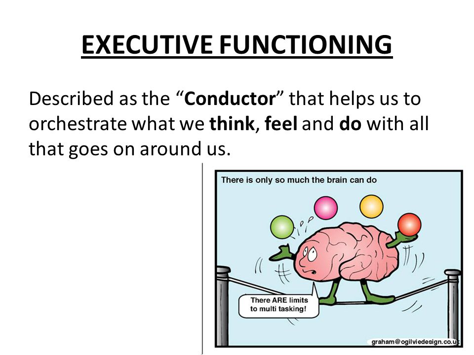 """EXECUTIVE FUNCTIONING Described as the """"Conductor"""" that helps us to orchestrate what we think, feel and do with all that goes on around us."""