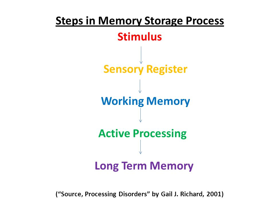 Steps in Memory Storage Process Stimulus Sensory Register Working Memory Active Processing Long Term Memory ( Source, Processing Disorders by Gail J.