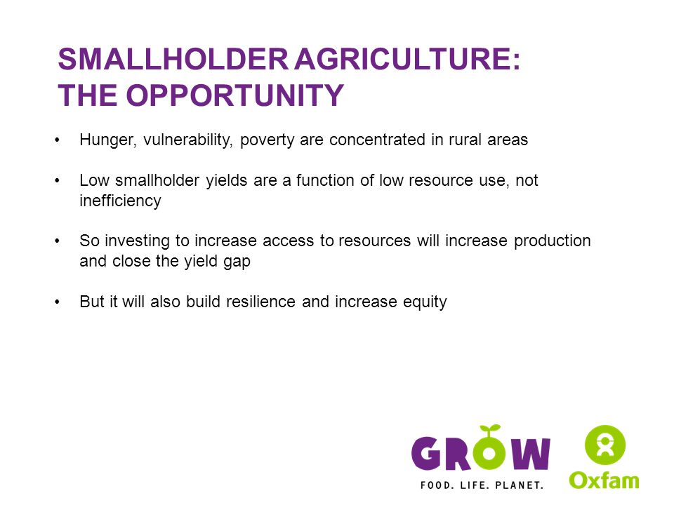 SMALLHOLDER AGRICULTURE: THE OPPORTUNITY Hunger, vulnerability, poverty are concentrated in rural areas Low smallholder yields are a function of low resource use, not inefficiency So investing to increase access to resources will increase production and close the yield gap But it will also build resilience and increase equity