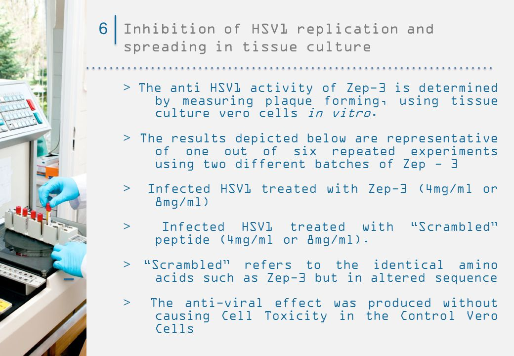 Inhibition of HSV1 replication and spreading in tissue culture 6 > The anti HSV1 activity of Zep-3 is determined by measuring plaque forming, using tissue culture vero cells in vitro.