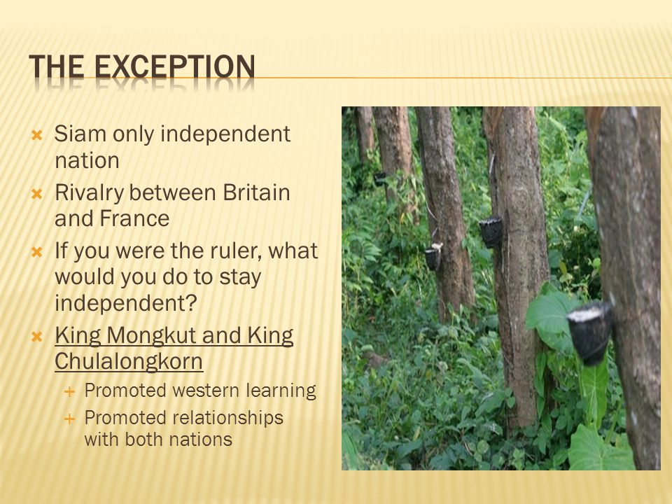 Siam only independent nation  Rivalry between Britain and France  If you were the ruler, what would you do to stay independent.